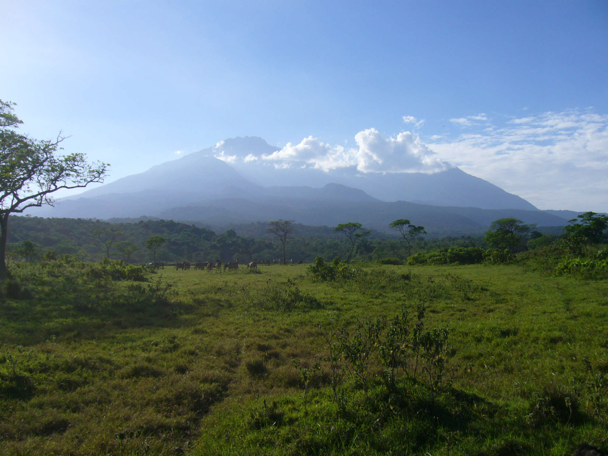 メルー山とキリマンジャロ登頂14日間