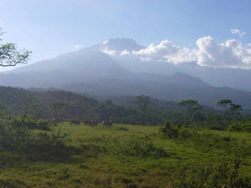 タンザニア・メルー山登頂 9日間